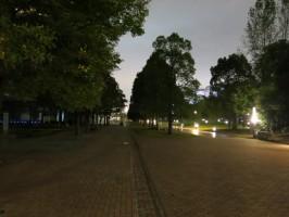 photo_2013-1020